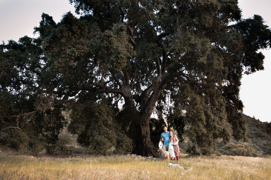 family under big tree
