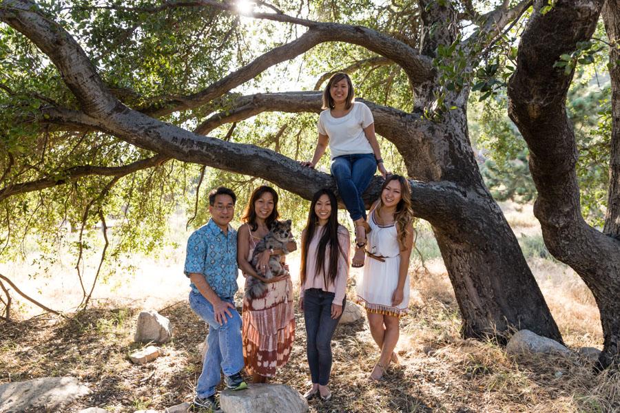 family shot under a big tree