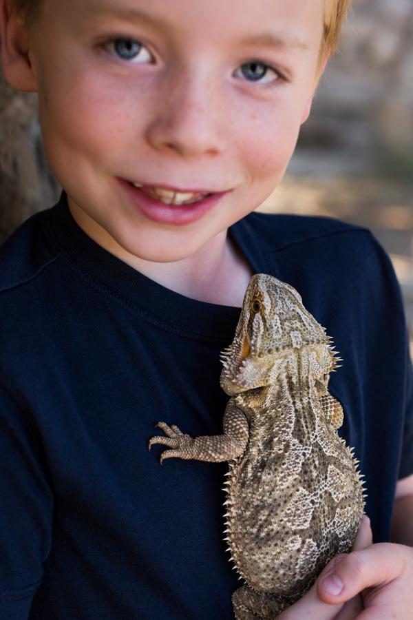 boy and his dragon
