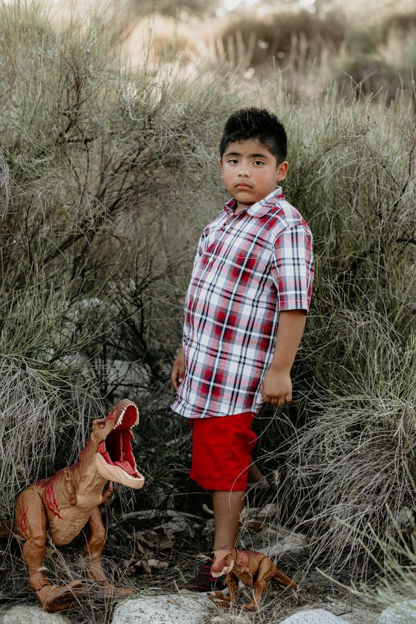 boy with his dinosaur, boy with trex