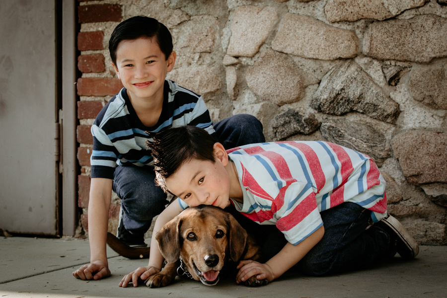 family portraits, brothers, dog