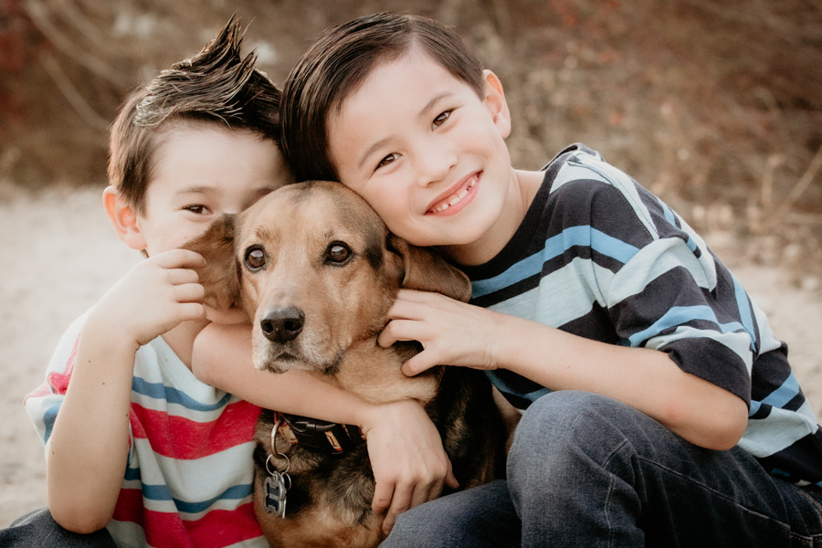 boys and dog, brothers, family