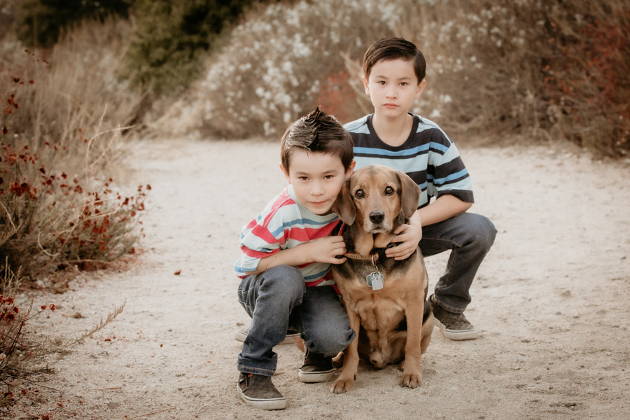 brothers, boys and dog, family